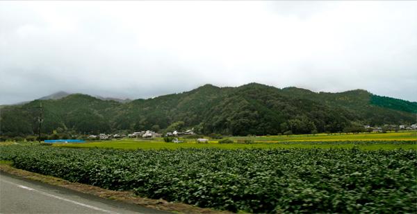 篠山田園風景