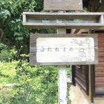 たねまめ合宿-170