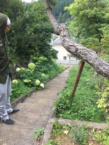 家の前にある石段です。